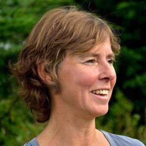 Inge De Stobbeleere - Equi Source