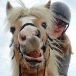 Ontwikkelingsgericht Paardrijden en Grondwerk