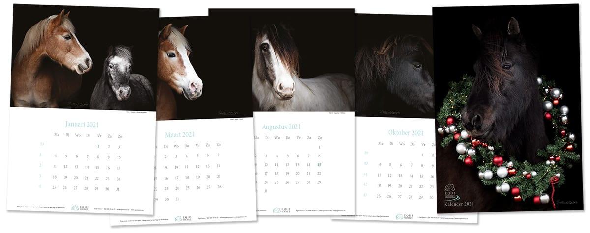 Equisource Kalender 2021
